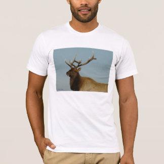 E0042 Young Bull Elk T-Shirt