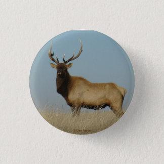 E0043 Young Bull Elk Pinback Button