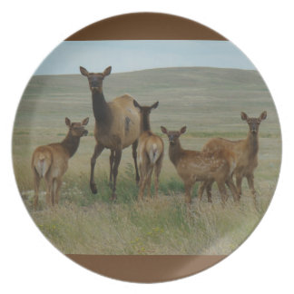 E0044 Cow Elk and Calves Dinner Plate