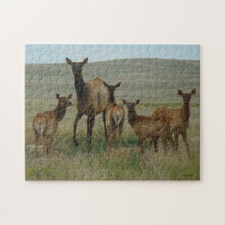E0044 Cow Elk and Calves Jigsaw Puzzle