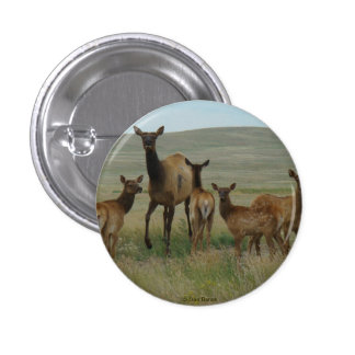 E0044 Cow Elk and Calves Pinback Button