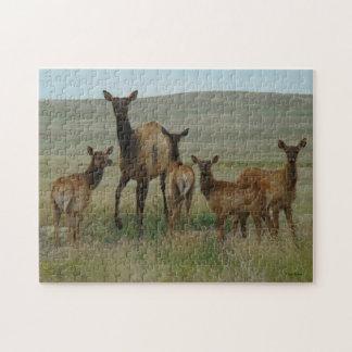 E0044 Cow Elk and Calves Jigsaw Puzzles