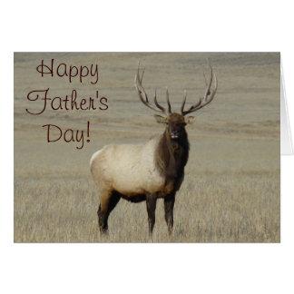 E0046 Bull Elk Cards