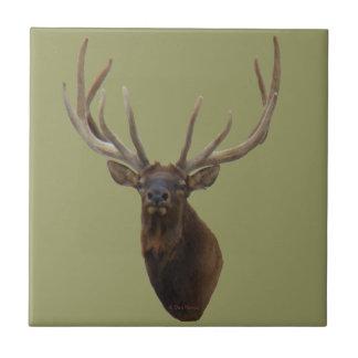 E0048 Bull Elk Head in Velvet Tile