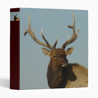 E0049 Bull Elk Binder