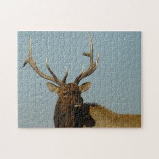 E0049 Bull Elk Jigsaw Puzzle