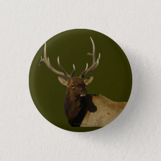 E0050 Bull Elk Button