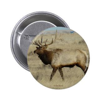 E0055 Bull Elk 2 Inch Round Button