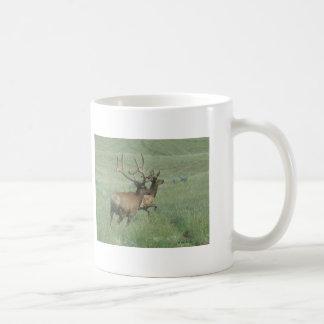 E0056 Bull Elk in Velvet Classic White Coffee Mug
