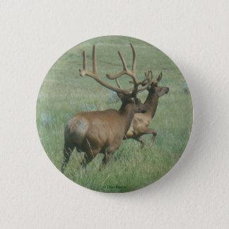 E0056 Bull Elk in Velvet Pinback Button