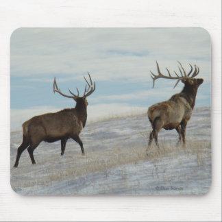 E0057 Bull Elk Lucky 13 Bull Mouse Pad