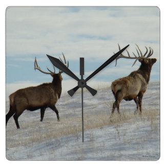 E0057 Bull Elk Lucky 13 Bull Square Wall Clock