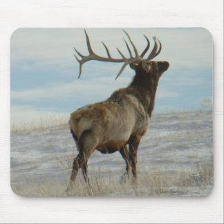 E0058 Bull Elk Lucky 13 Bull Mouse Pad