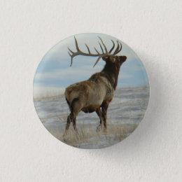 E0058 Bull Elk Lucky 13 Bull Pinback Button