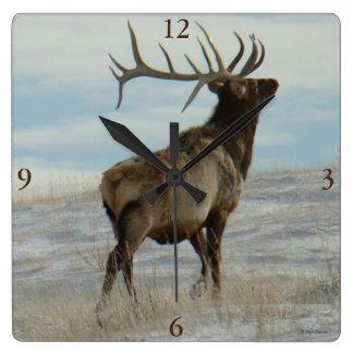E0058 Bull Elk Lucky 13 Bull Square Wall Clock