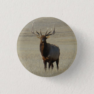 E0059 Bull Elk Pinback Button