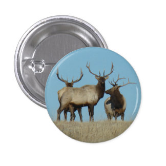 E0060 Bull Elk Sky Lined 1 Inch Round Button