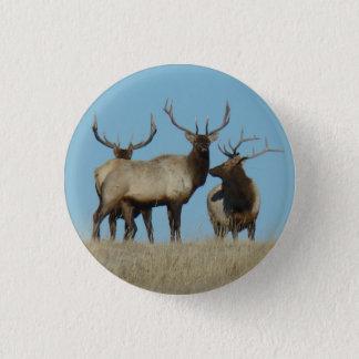 E0060 Bull Elk Sky Lined Pinback Button
