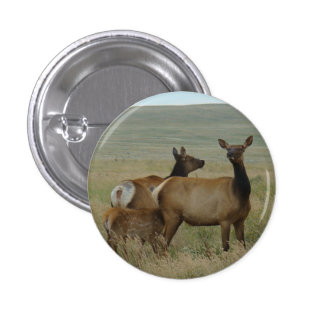 E0061 Cow Elk and Calf 1 Inch Round Button