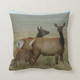 E0061 Cow Elk and Calf Throw Pillow