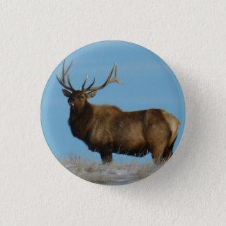E0062 Bull Elk Sky Lined Button
