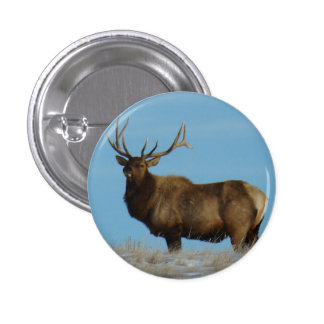 E0062 Bull Elk Sky Lined 1 Inch Round Button