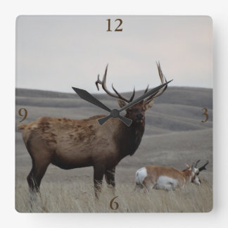 E0063 Bull Elk and Pronghorn Antelope Square Wall Clock