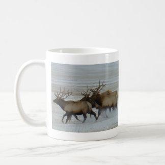 E0064 Bull Elk Coffee Mug
