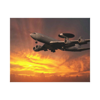 E3D Sentry ZH102 Canvas Print