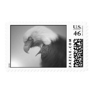 E45-0gbridger Postage Stamp