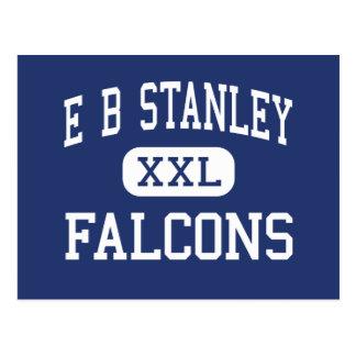 E B Stanley Falcons Middle Abingdon Virginia Postcard
