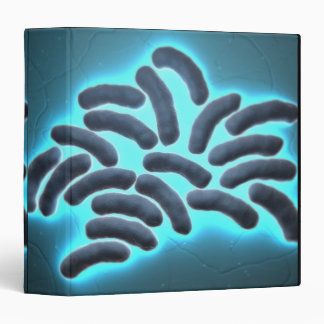 E-coli Cells 2 3 Ring Binder