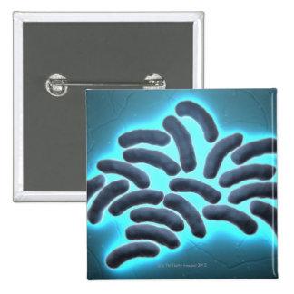 E-coli Cells 2 2 Inch Square Button