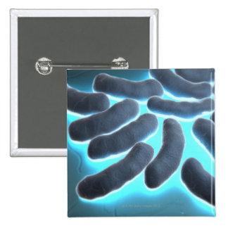 E-coli Cells 2 Inch Square Button