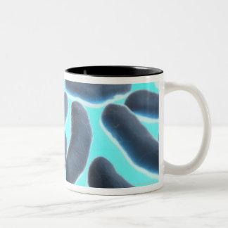 E-coli Cells Two-Tone Coffee Mug