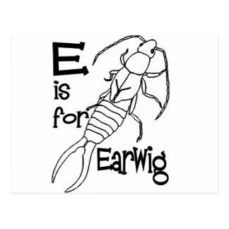e is for earwig.jpg postcard