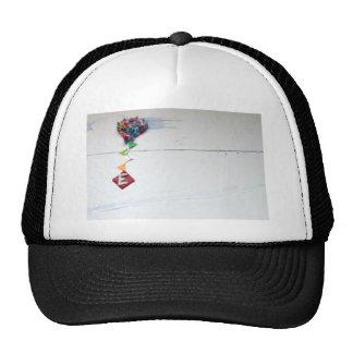 e.jpg trucker hat