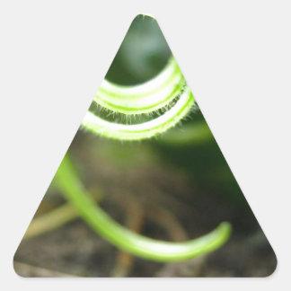 e pegatina triangular