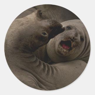 E-Seals Curve Stickers