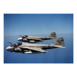 EA-6B Prowlers Poster
