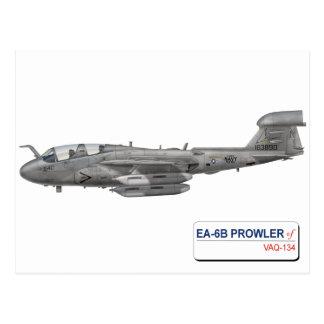 EA-6B VAQ-134 POSTCARD