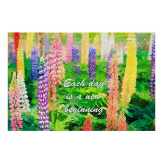 Each Day is a New Beginning Colorful Lupin Flowers Posters