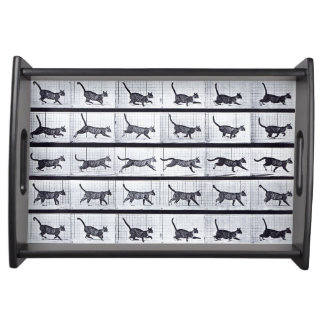 EADWEARD MUYBRIDGE: Cat Walking Gallop-Small Tray
