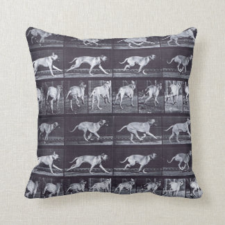 EADWEARD MUYBRIDGE: Dog Dread Galloping Cushion