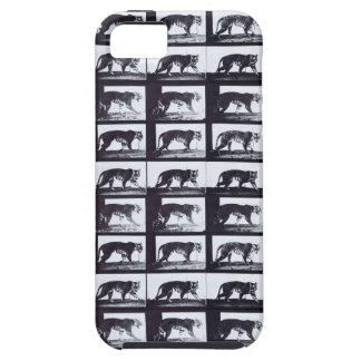 EADWEARD MUYBRIDGE: Tigress Walking-iPhone 5 Case