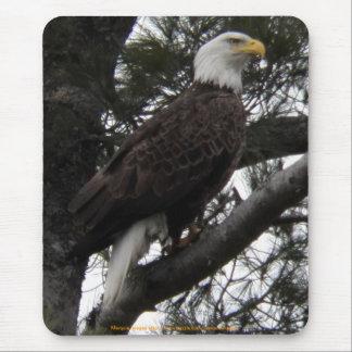 Eagle 10 mouse pad