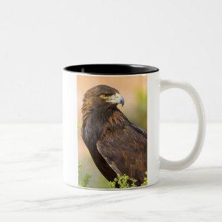 Eagle - 11oz. Mug