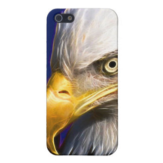 Eagle 1 iPhone 5 covers