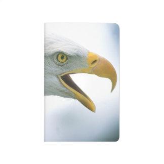 Eagle#1 Journal