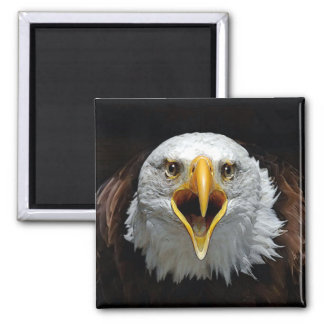 EAGLE 2 INCH SQUARE MAGNET